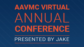 Virtual Conferences? Yeah, We Can Do That!